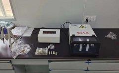 <strong>TJG高通量组织研磨仪在猪肉组织研磨中的应用</strong>