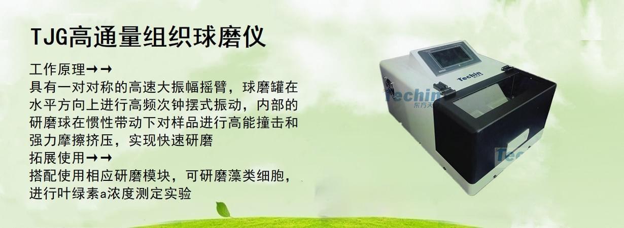 TJG高通量组织球磨仪